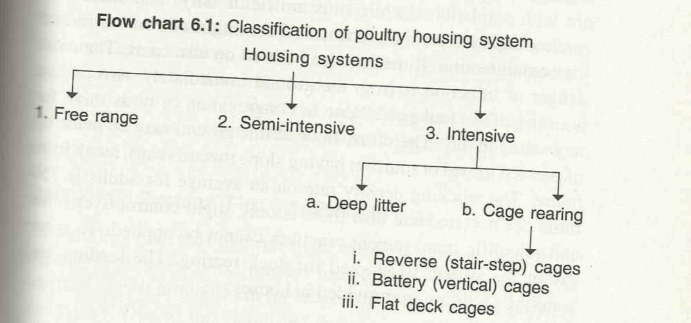 Poultry Housing Systems,Types of poultry house | The Poultry