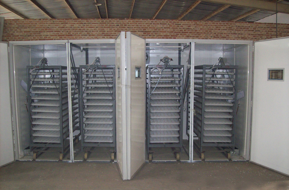 Advanced Ideal Chicken Egg Incubators Equipments For