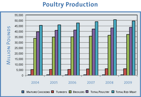 A Guide to World Poultry chicken/meat(market/ecnomic analysis,trends,statistics 2012),upcoming trends in world poultry