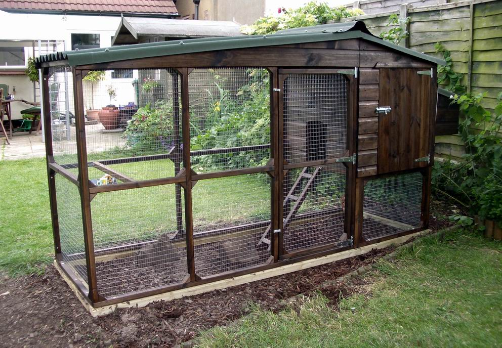 6 considerations before u start a chicken coop the for Chicken coop size for 6 chickens