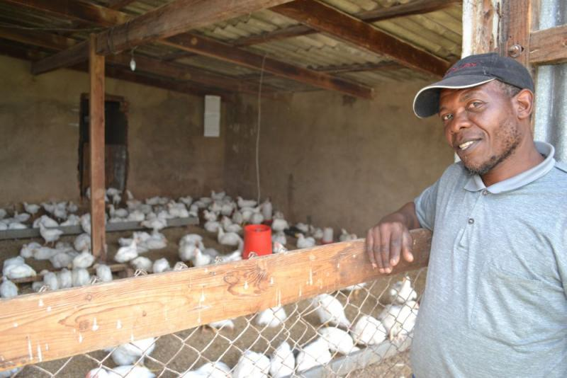 Overview of Poultry Industry in South Africa