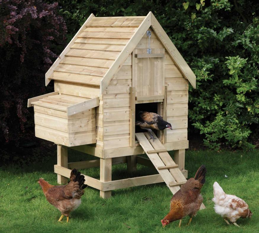 diy small chicken coop nakie