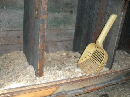 bedding material in nest box