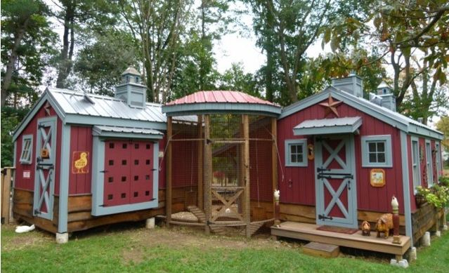 clucking cool urban chicken coop