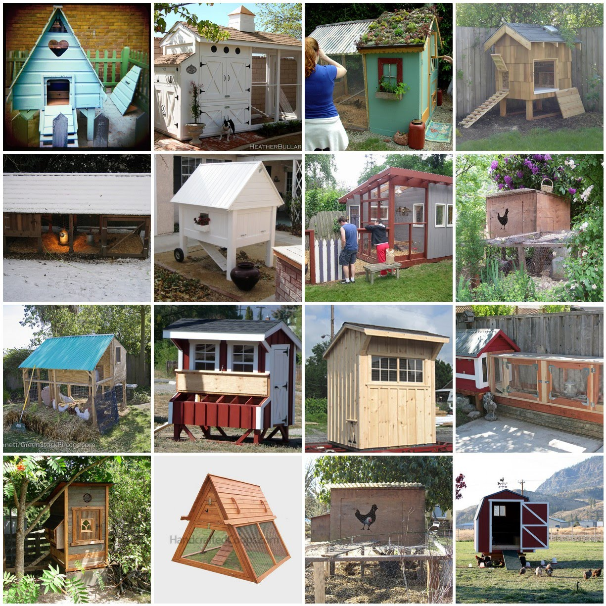 Different types of backyard chicken coops the poultry guide for Different types of house plans