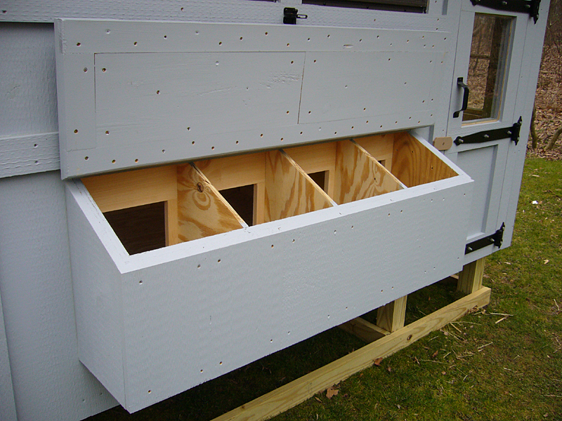 size of chicken coop