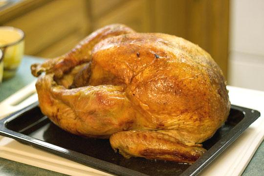 taste of turkey meat