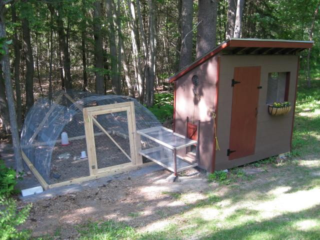 Chicken Coop For 6 Hens