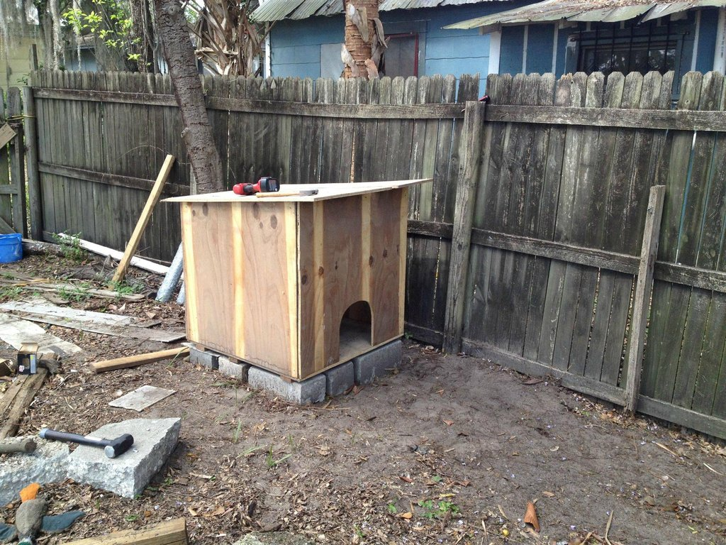 Simple CHICKEN COOP1