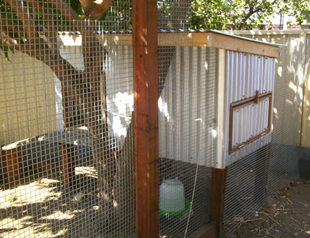 Chicken Coops Designs Free