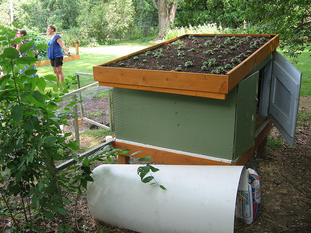 Free Green Roof En Coop Plans Build One Yourself
