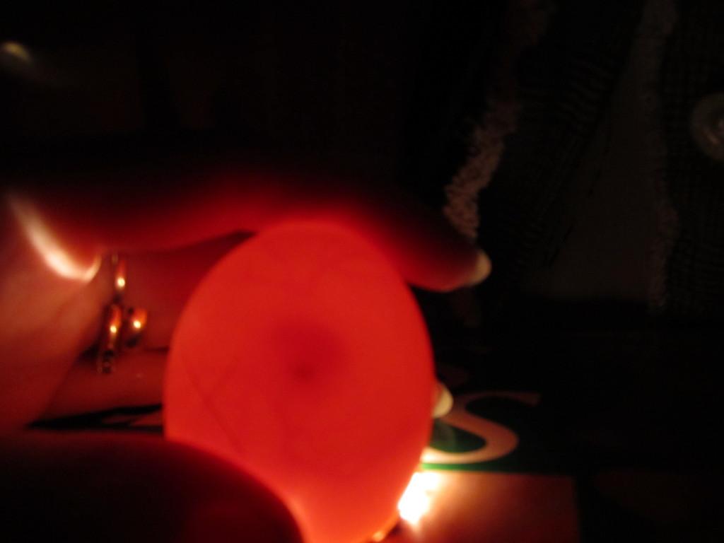candling egg