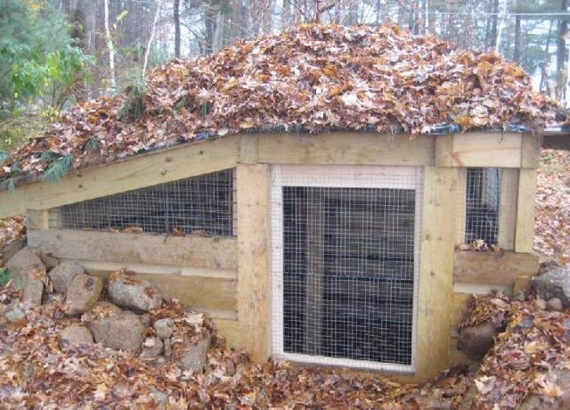20 Stunning Chicken Coop Designs For Your Lovely Birds