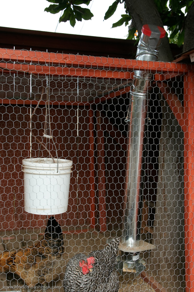 10 diy chicken feeder and waterer plans and ideas the