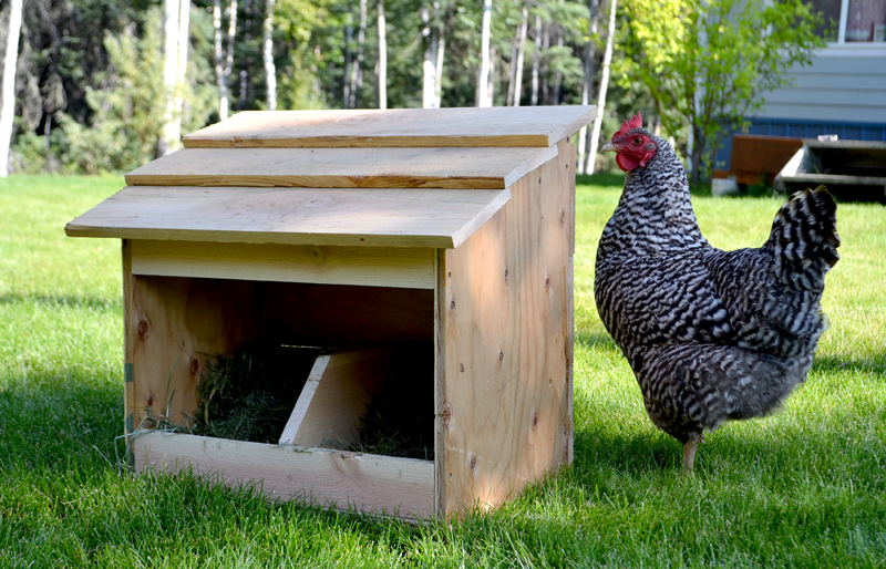 Quick Nesting Box Plan by ana white