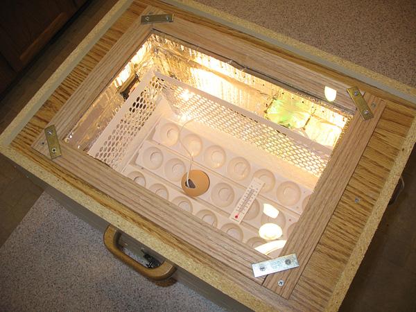 Drawer Incubator