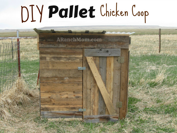 10 Free Pallet Chicken Coop Plans You Can Build In A Weekend The