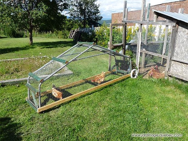 10 a frame chicken coops for keeping small flock of for Mobile chicken coop plans