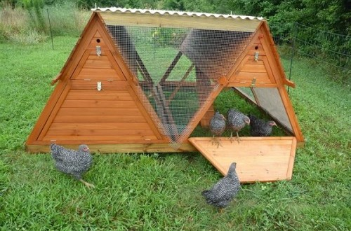 10 a frame chicken coops for keeping small flock of chickens the poultry guide