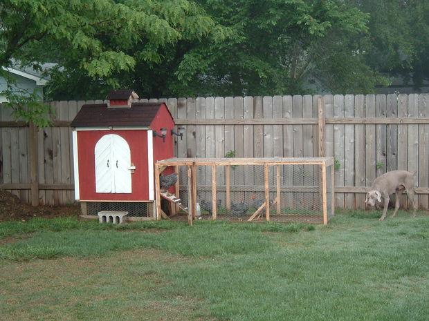 Barn-Style Hen House
